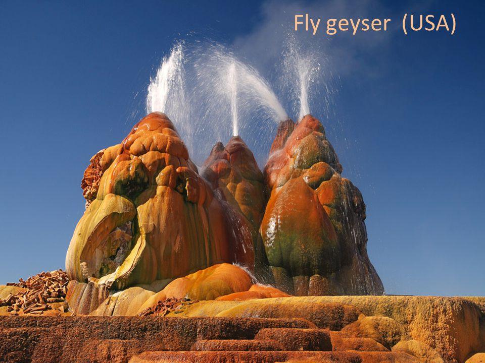 Fly geyser (USA)
