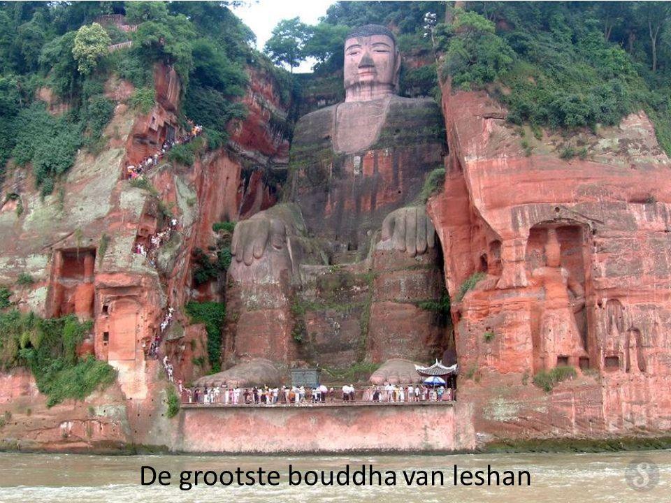 De grootste bouddha van leshan
