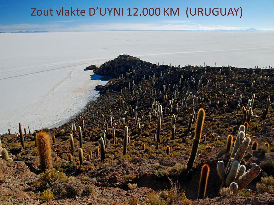 Zout vlakte D'UYNI 12.000 KM (URUGUAY)