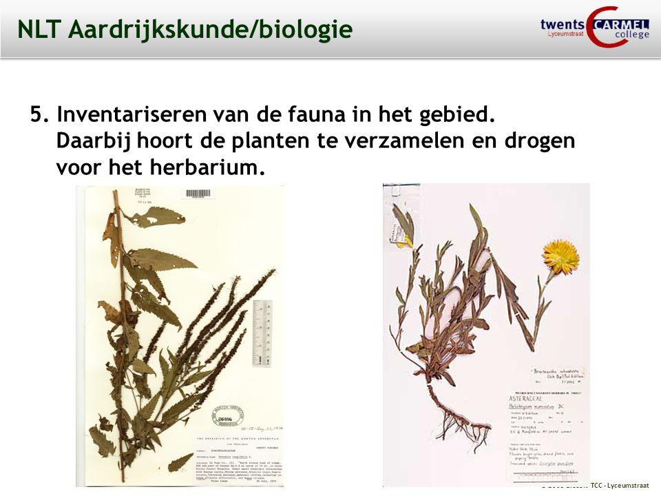 NLT Aardrijkskunde/biologie