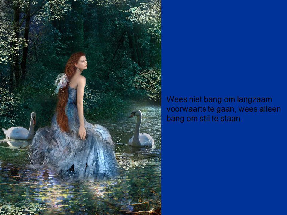 Wees niet bang om langzaam voorwaarts te gaan, wees alleen bang om stil te staan.