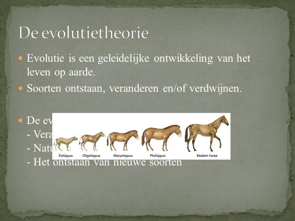 De evolutietheorie Evolutie is een geleidelijke ontwikkeling van het leven op aarde. Soorten ontstaan, veranderen en/of verdwijnen.