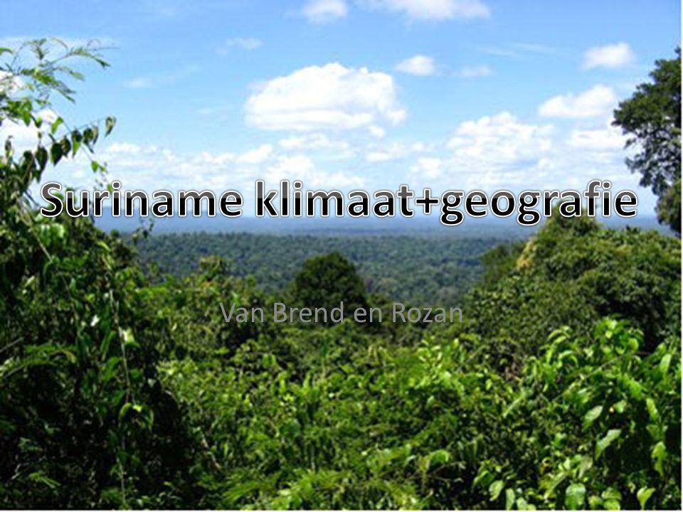 Suriname klimaat+geografie