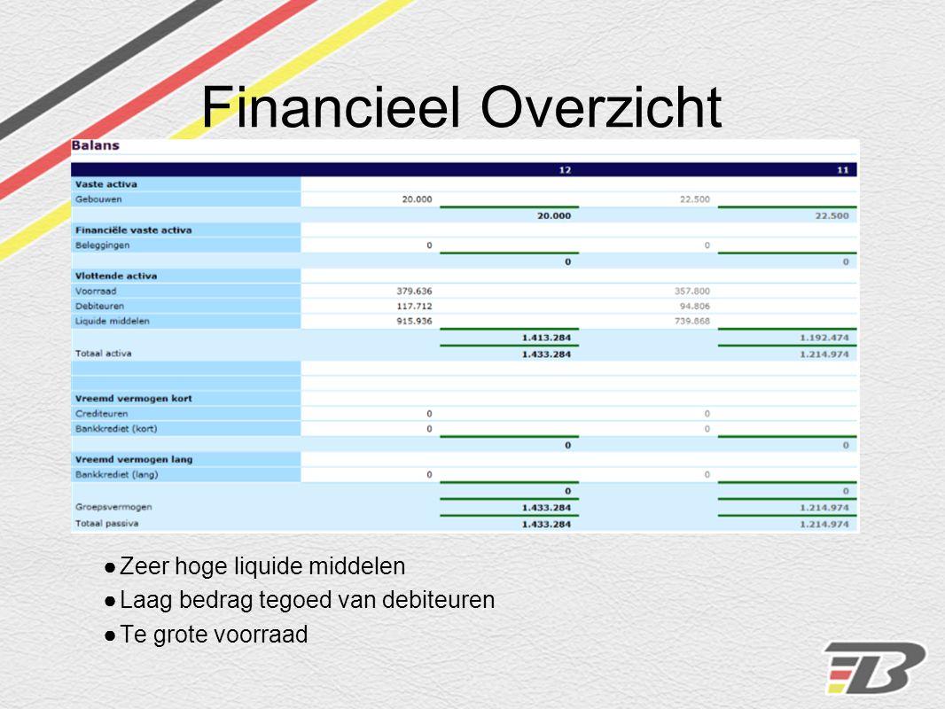 Financieel Overzicht Winstpercentage -30,9% (periode 12)