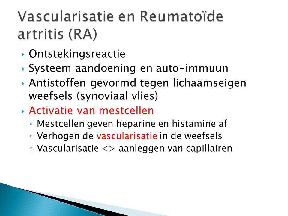 Vascularisatie en Reumatoïde artritis (RA)