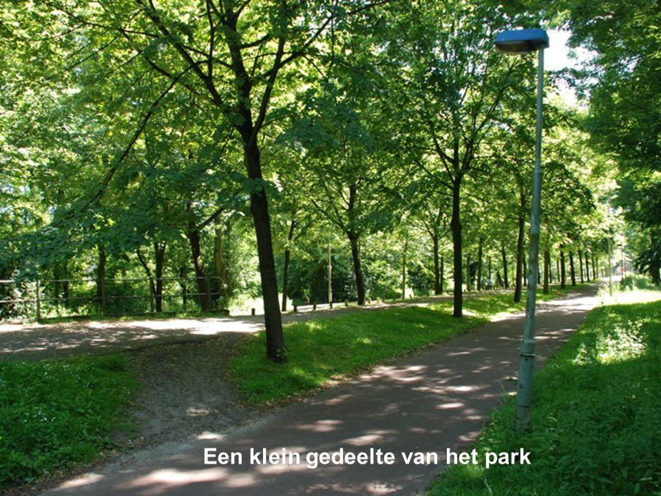 Een klein gedeelte van het park