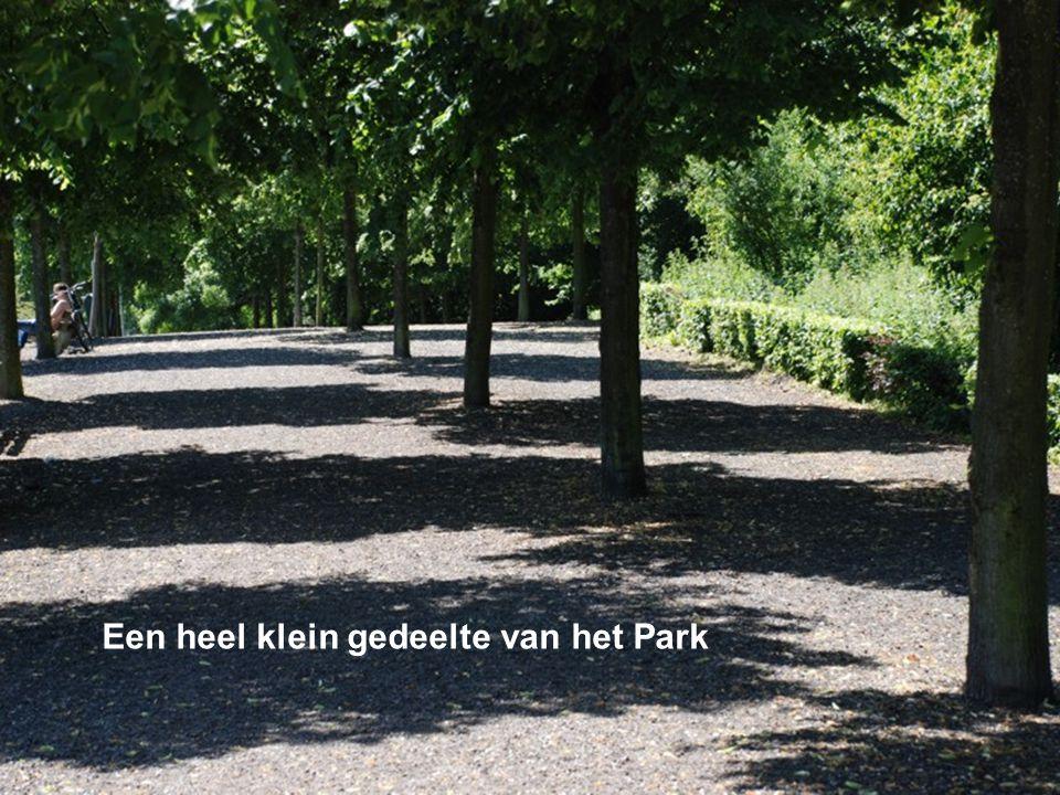 Een heel klein gedeelte van het Park