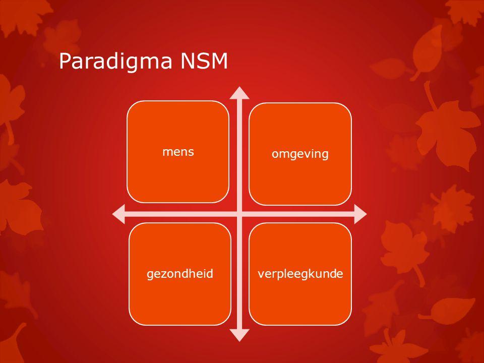 Paradigma NSM mens omgeving gezondheid verpleegkunde