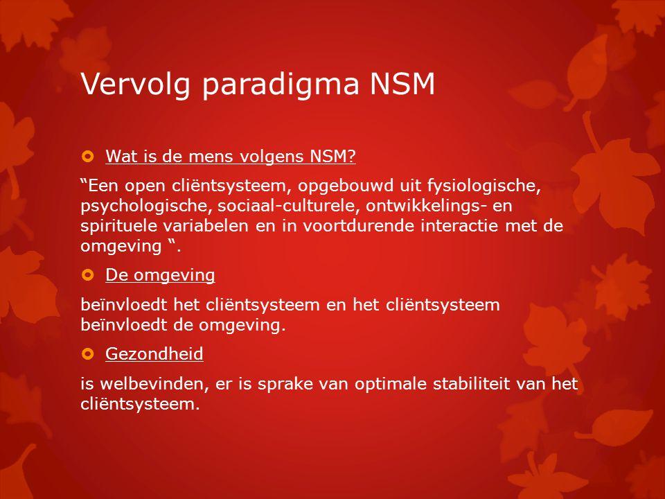 Vervolg paradigma NSM Wat is de mens volgens NSM