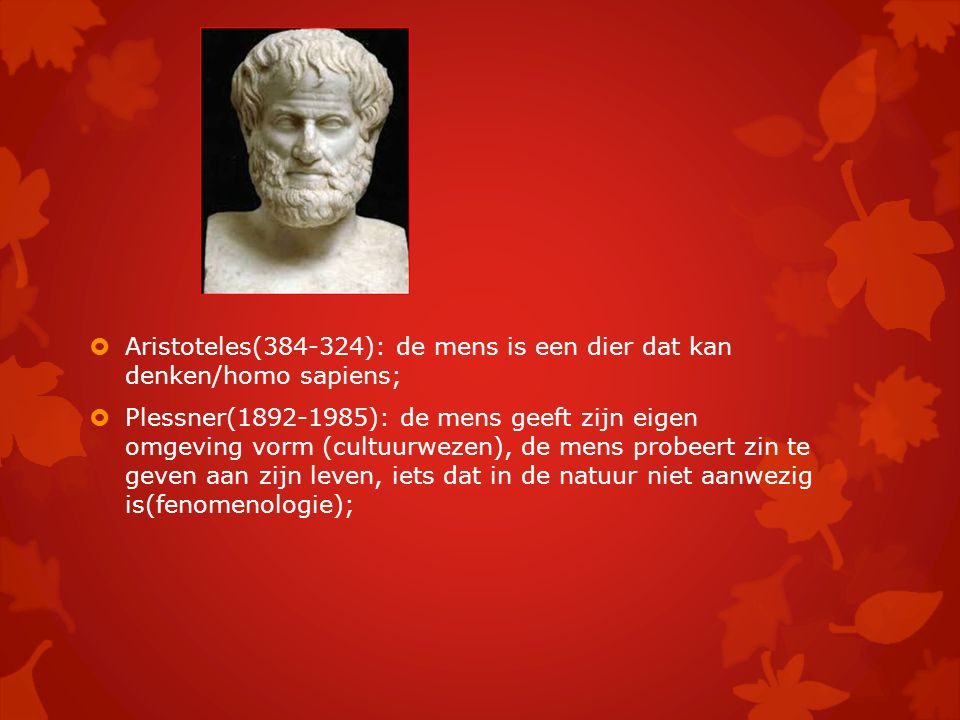 Aristoteles(384-324): de mens is een dier dat kan denken/homo sapiens;
