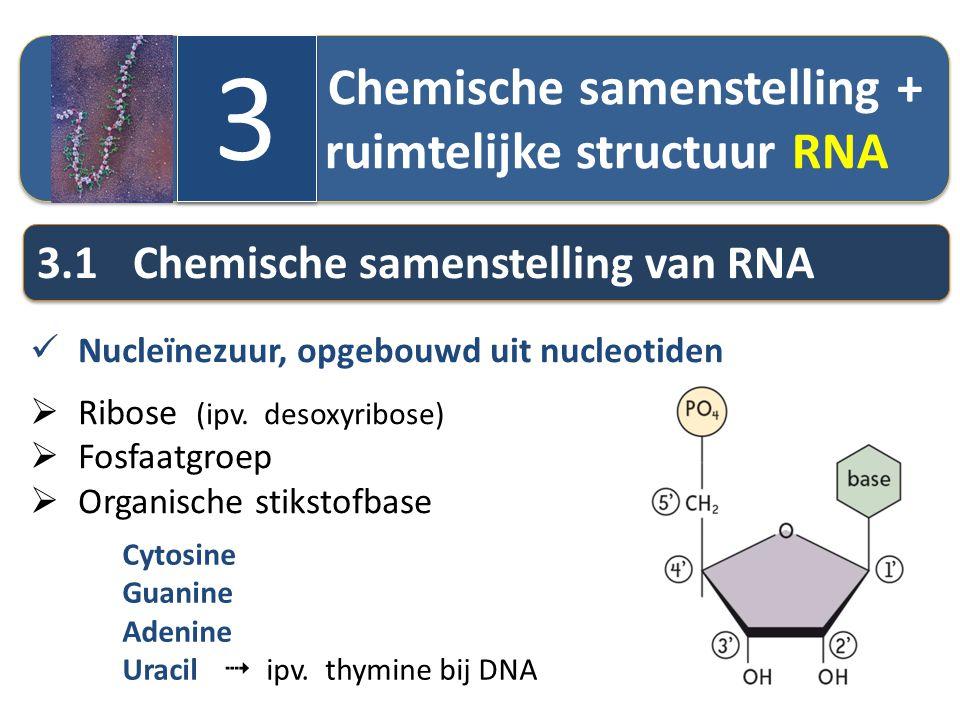 3 3.1 Chemische samenstelling van RNA