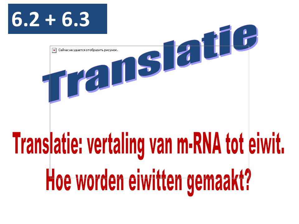 6.2 + 6.3 Translatie Translatie: vertaling van m-RNA tot eiwit.