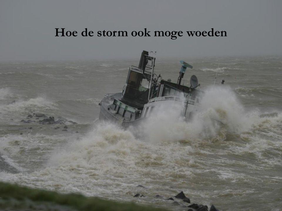 Hoe de storm ook moge woeden