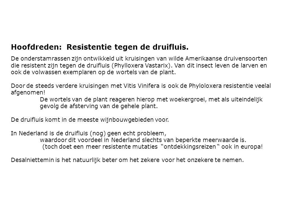 Hoofdreden: Resistentie tegen de druifluis.