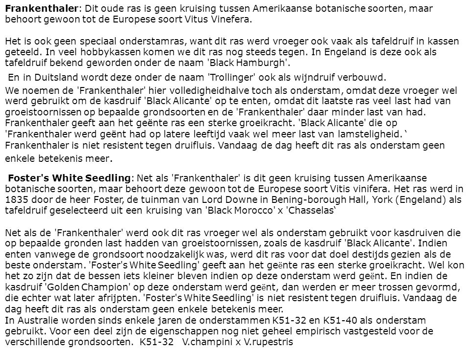 Frankenthaler: Dit oude ras is geen kruising tussen Amerikaanse botanische soorten, maar behoort gewoon tot de Europese soort Vitus Vinefera.