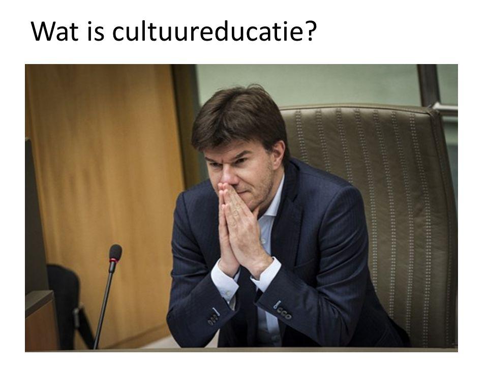 Wat is cultuureducatie