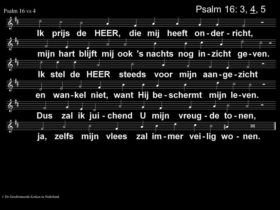 Psalm 16: 3, 4, 5
