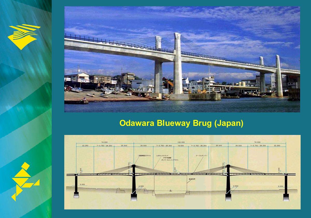 Odawara Blueway Brug (Japan)
