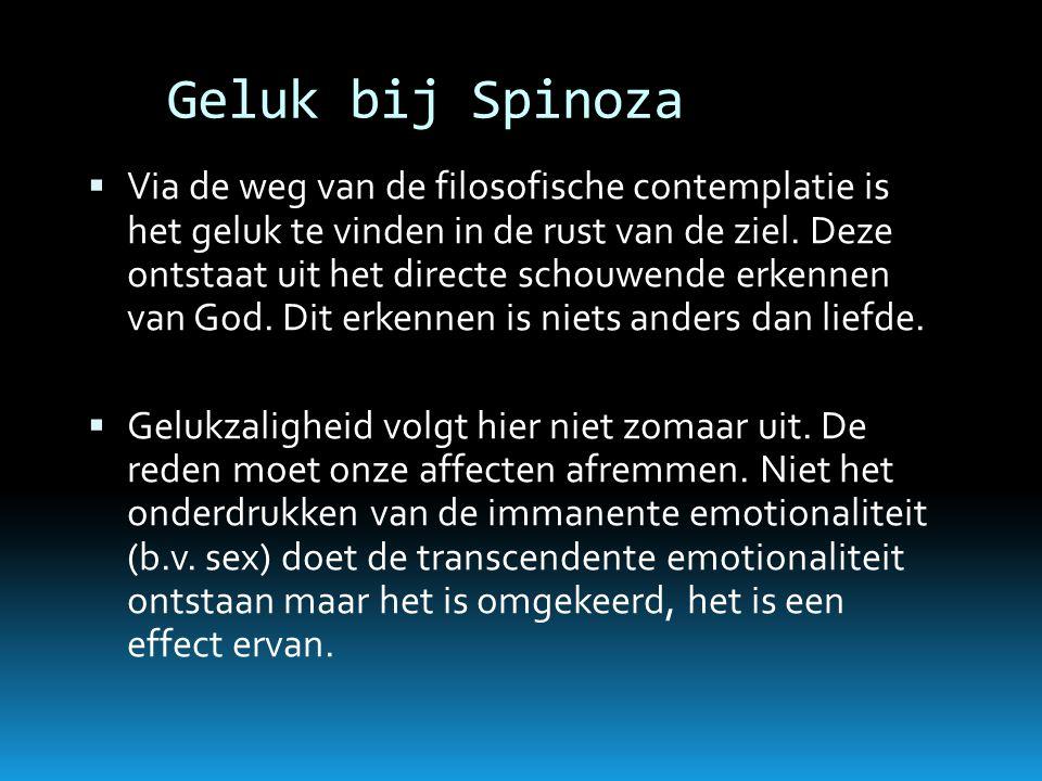 Geluk bij Spinoza