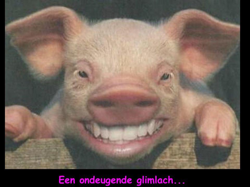 Een ondeugende glimlach...
