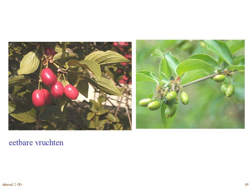 Cornus mas vrucht eetbare vruchten inhoud: 2 <E> 69
