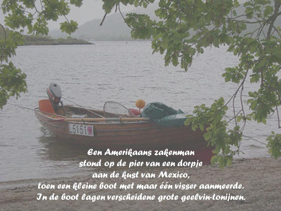 Een Amerikaans zakenman stond op de pier van een dorpje aan de kust van Mexico, toen een kleine boot met maar één visser aanmeerde.