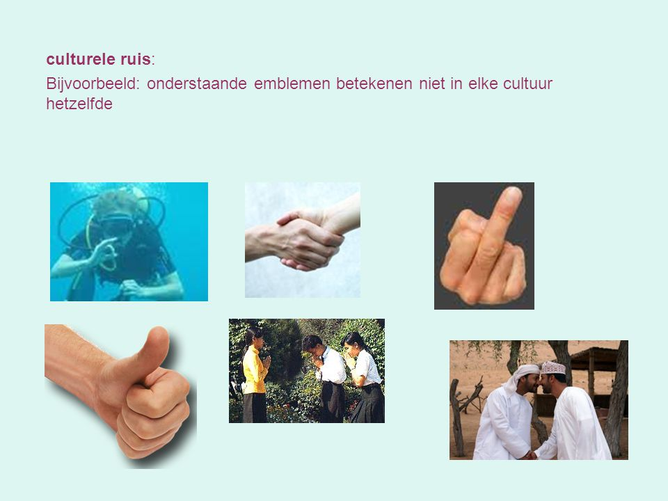 culturele ruis: Bijvoorbeeld: onderstaande emblemen betekenen niet in elke cultuur hetzelfde