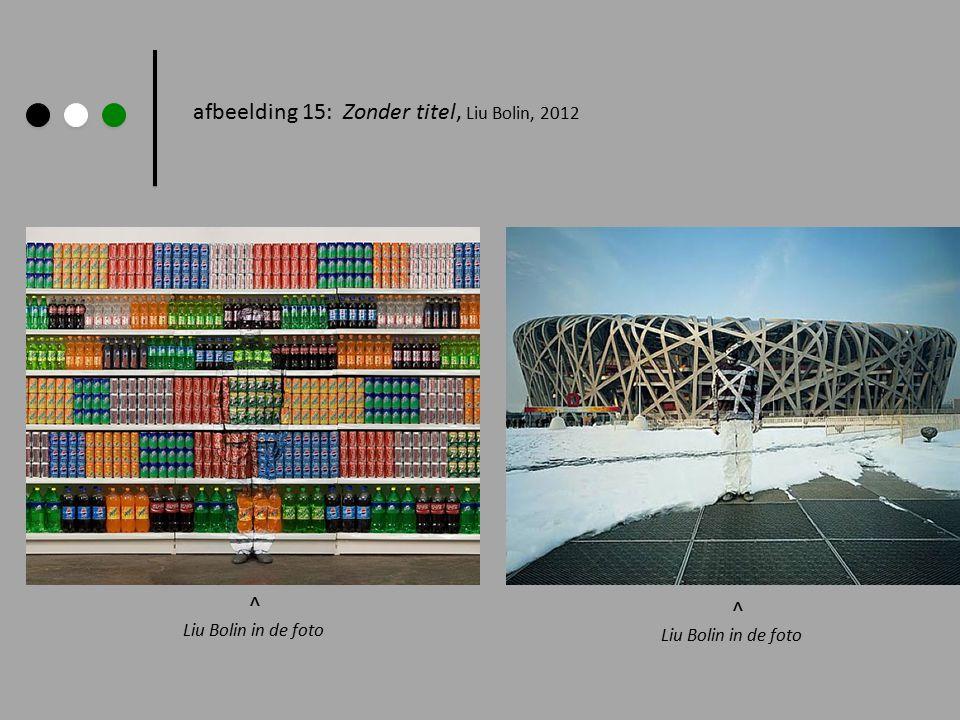 afbeelding 15: Zonder titel, Liu Bolin, 2012