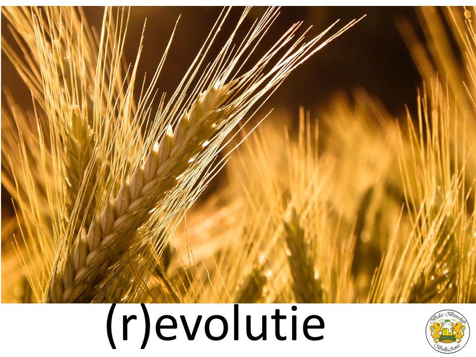 evolutie (r)evolutie