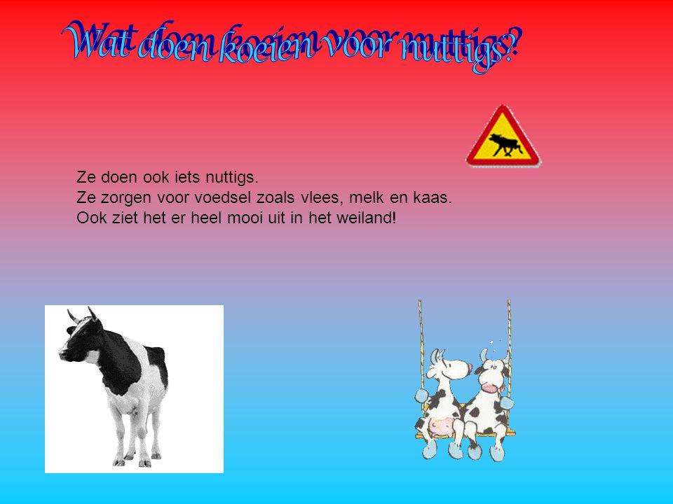 Wat doen koeien voor nuttigs