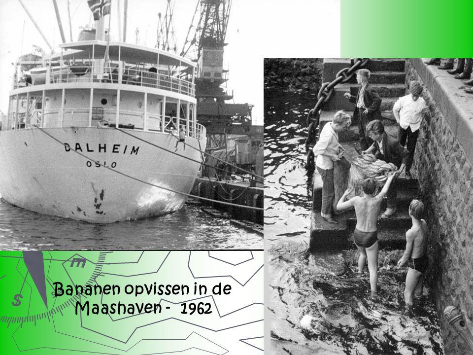 Bananen opvissen in de Maashaven - 1962
