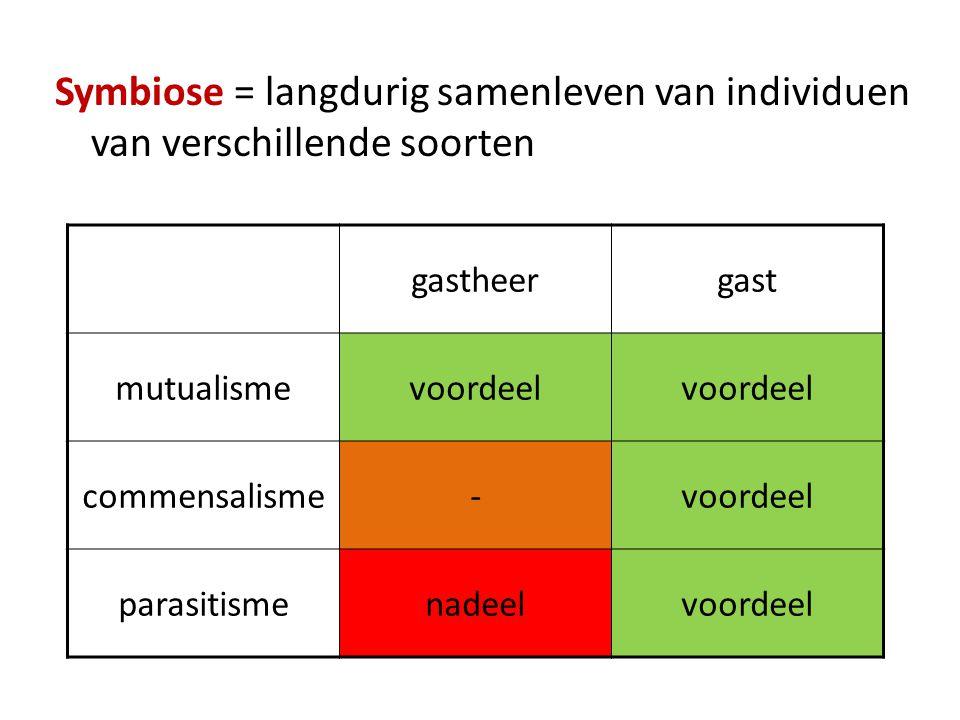 Symbiose = langdurig samenleven van individuen van verschillende soorten