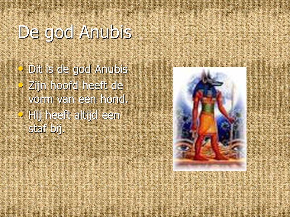 De god Anubis Dit is de god Anubis