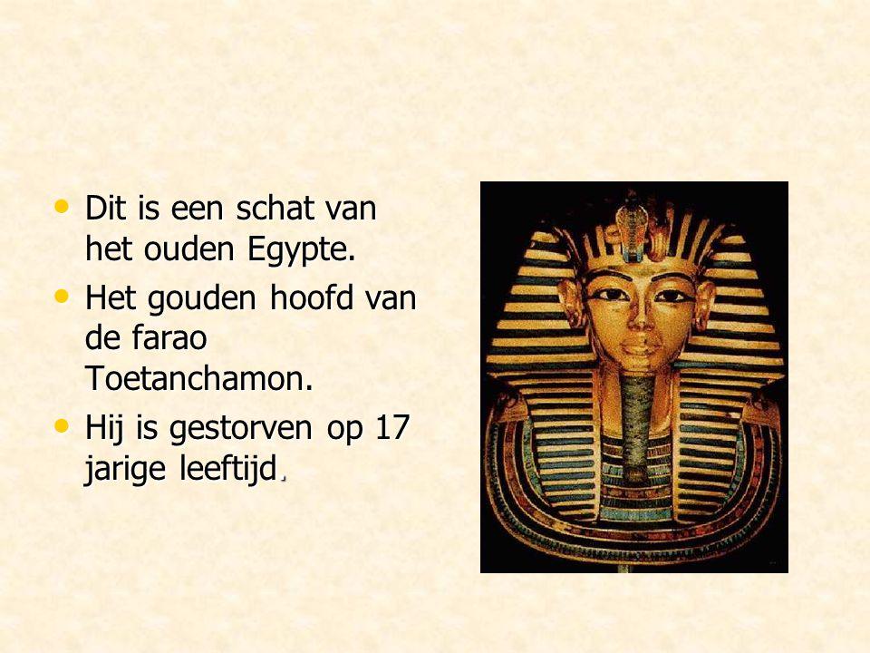 Dit is een schat van het ouden Egypte.