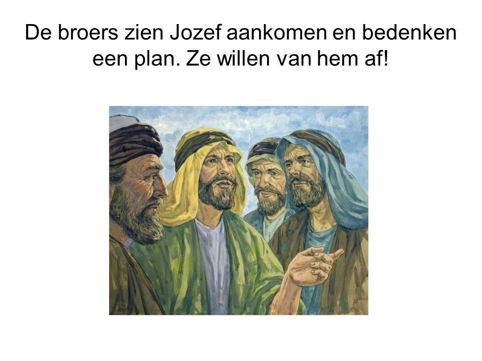 De broers zien Jozef aankomen en bedenken een plan
