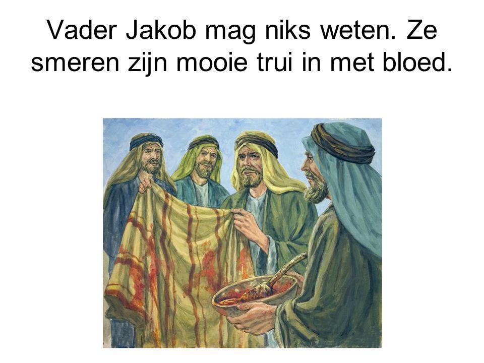 Vader Jakob mag niks weten. Ze smeren zijn mooie trui in met bloed.