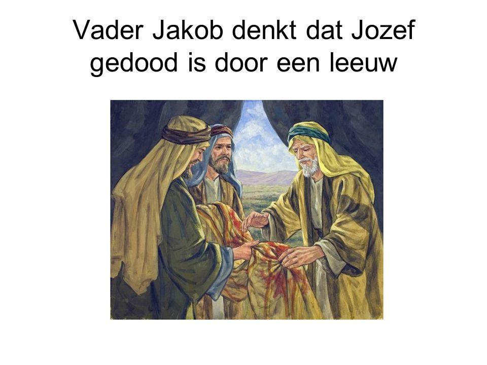Vader Jakob denkt dat Jozef gedood is door een leeuw