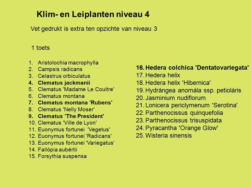 Klim- en Leiplanten niveau 4
