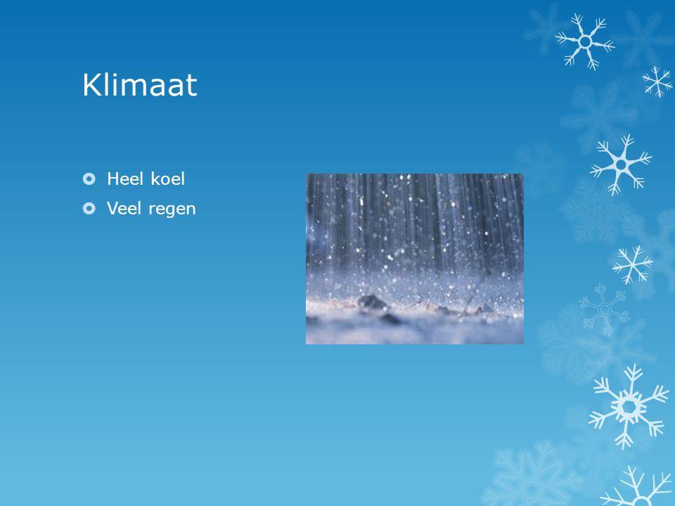 Klimaat Heel koel Veel regen