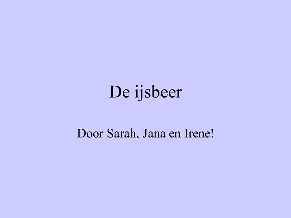 Door Sarah, Jana en Irene!
