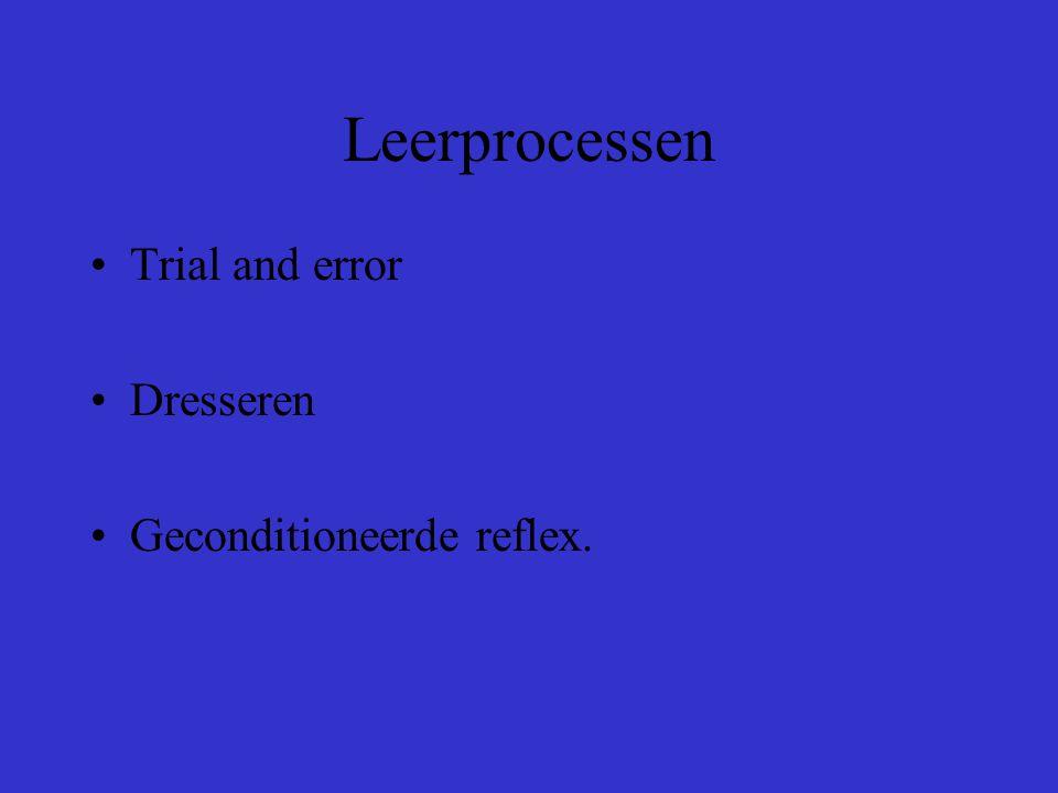 Leerprocessen Trial and error Dresseren Geconditioneerde reflex.