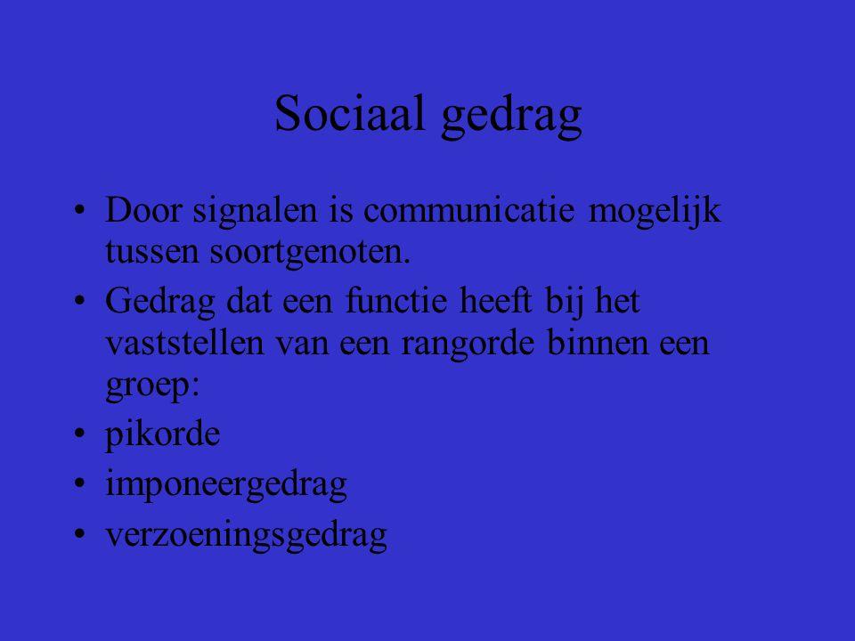 Sociaal gedrag Door signalen is communicatie mogelijk tussen soortgenoten.
