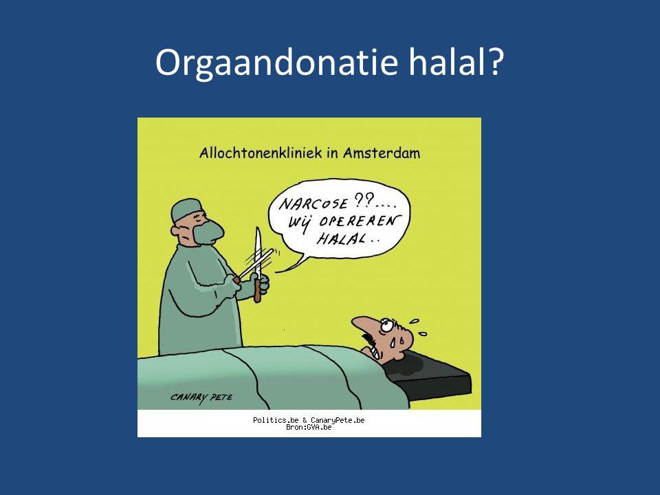 Orgaandonatie halal