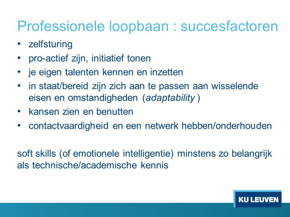 Professionele loopbaan : succesfactoren