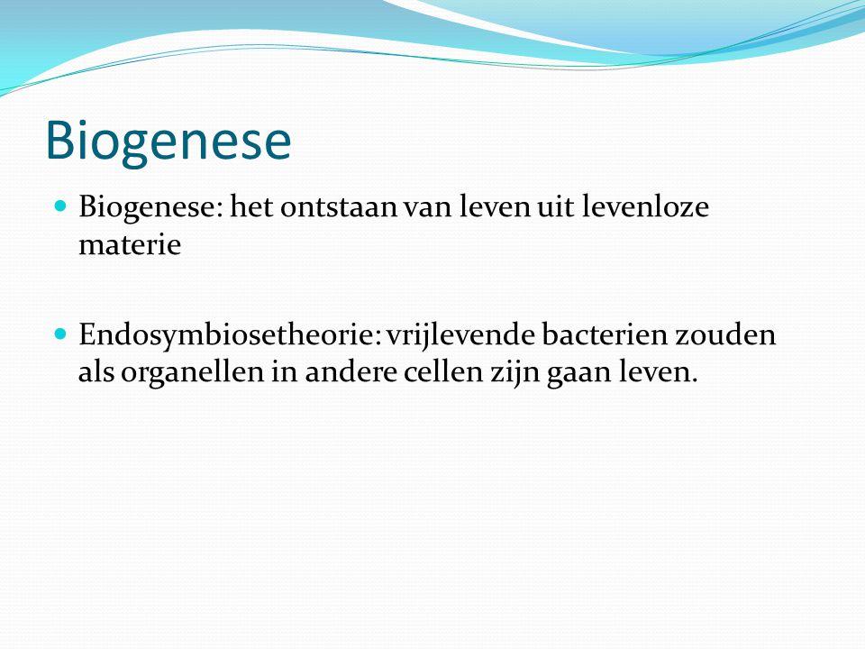 Biogenese Biogenese: het ontstaan van leven uit levenloze materie