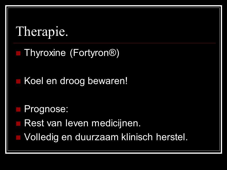Therapie. Thyroxine (Fortyron®) Koel en droog bewaren! Prognose: