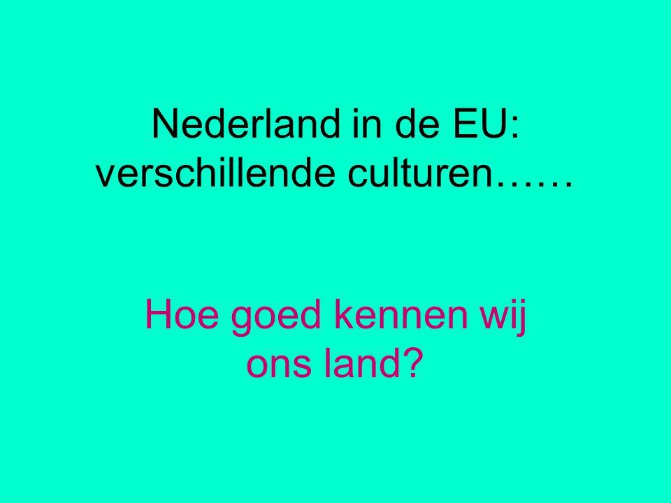 Nederland in de EU: verschillende culturen……