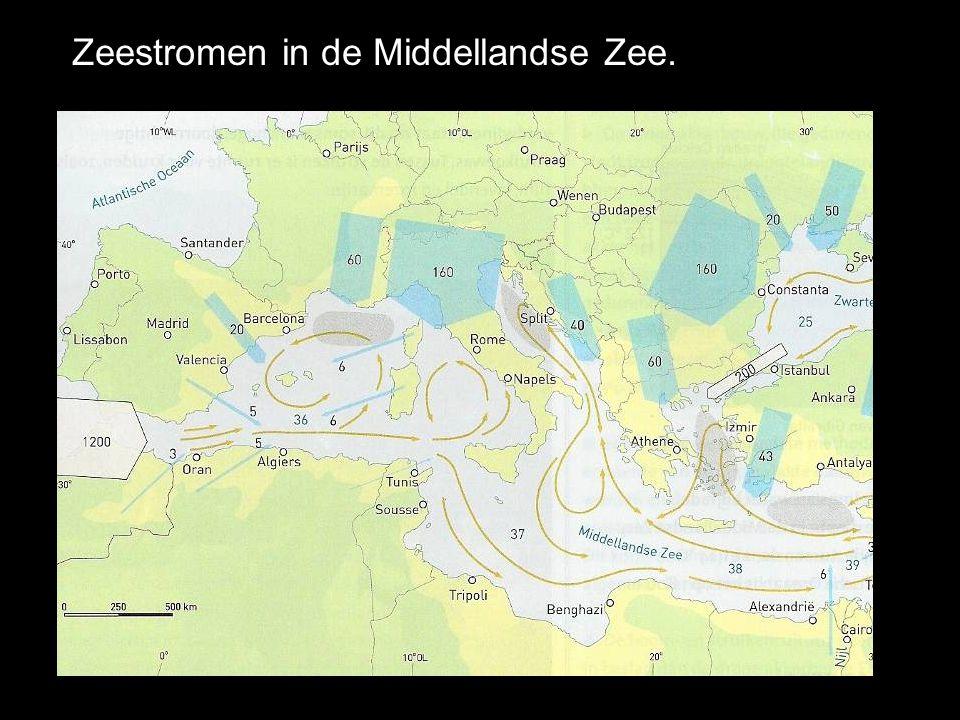 Zeestromen in de Middellandse Zee.