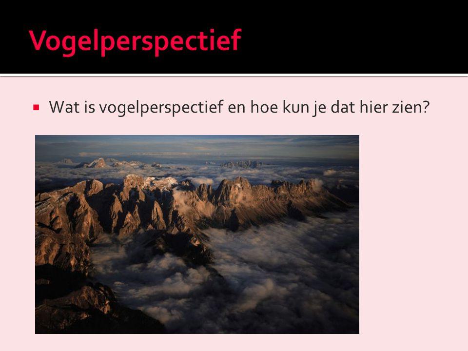 Vogelperspectief Wat is vogelperspectief en hoe kun je dat hier zien