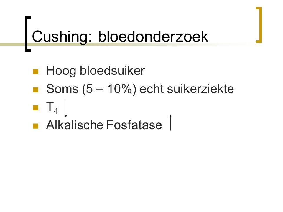 Cushing: bloedonderzoek